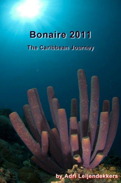 bonaire2011